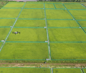 Remote sensing drones
